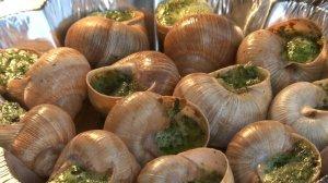 Escargots de Bourgogne : slakken
