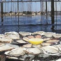 Fan van oesters?