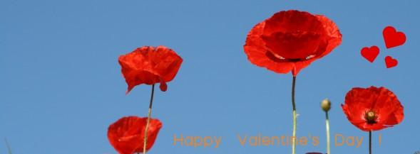 Valentijnsdag bij Moerland Verhuur, www.moerland.com