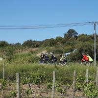Fietsen voor KIKA zoekt nog sponsoren voor de 'Giro di Kika'