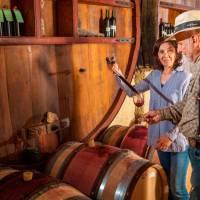 Domaine des Jougla - Wijn uit Saint Chinian : één van de besten sinds 1595!
