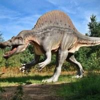 Musée-Parc des Dinosaures à Meze